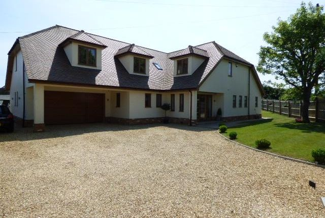 Thumbnail Detached house for sale in Clapham, Beds