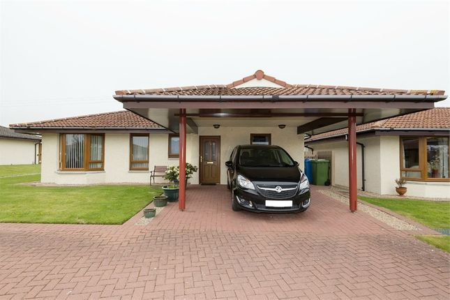 Thumbnail Detached bungalow for sale in Highland Park, Invergordon, Highland