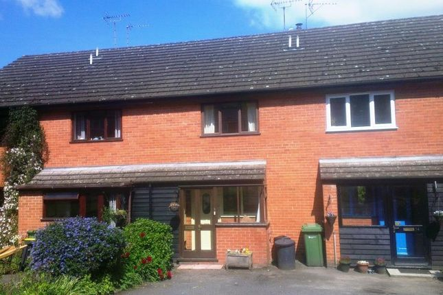 Thumbnail Terraced house to rent in Kington, Herefordshire