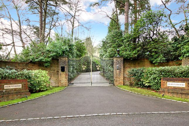 5 bedroom detached house for sale in Westwood Road, Windlesham, Surrey