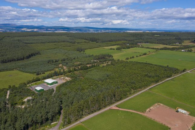 Thumbnail Land for sale in Burnside Wood, Fortrose, Ross-Shire