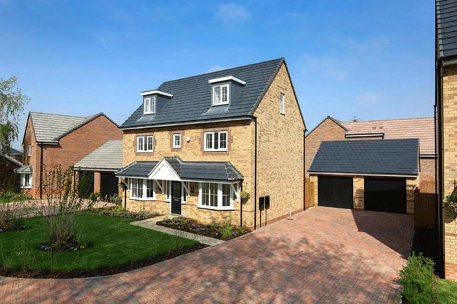 """Thumbnail Detached house for sale in """"Warwick"""" at Stanley Close, Corby"""