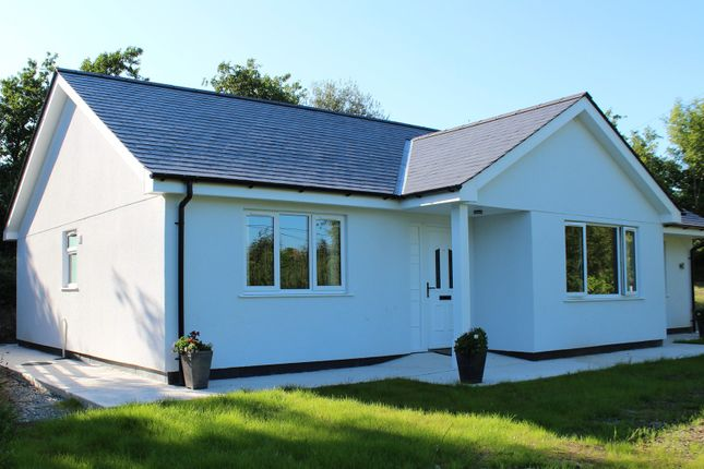 Thumbnail Detached bungalow for sale in Llanddona, Beaumaris