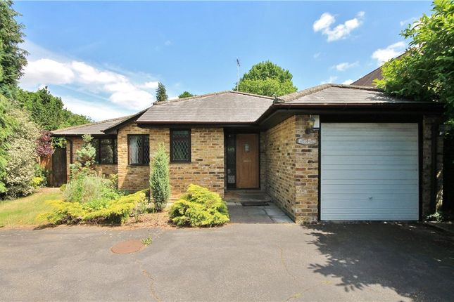 4 bed detached house to rent in Oak End Way, Woodham, Surrey