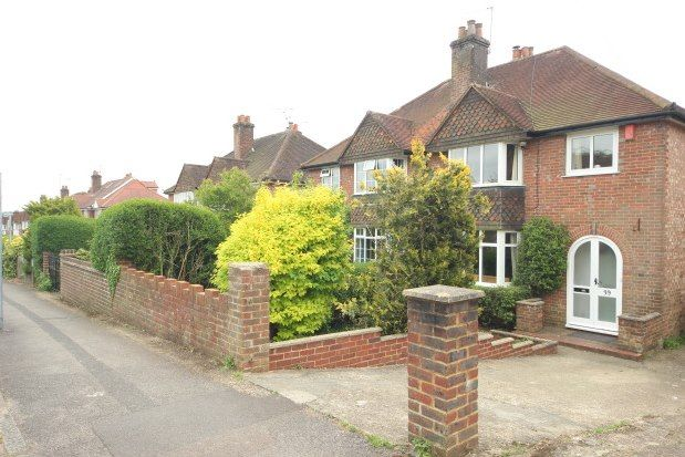Thumbnail Property to rent in Old Palace Road, Guildford