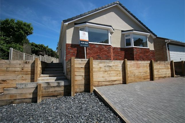 Thumbnail Detached bungalow for sale in Scarf Road, Poole, Dorset
