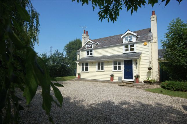Thumbnail Detached house for sale in Lower Burnham Road, North Fambridge, Essex