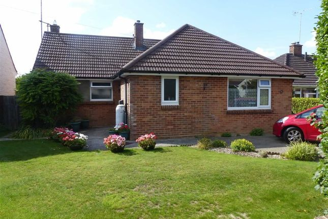 Thumbnail Detached bungalow for sale in Casterbridge Road, Dorchester, Dorset