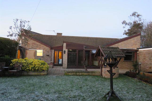 Thumbnail Bungalow to rent in Cedar Drive, Loddon, Norwich