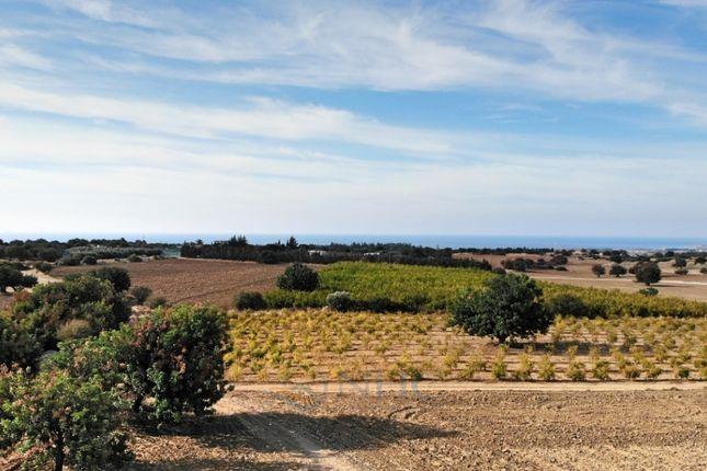 Thumbnail Land for sale in Kouklia, Paphos, Cyprus