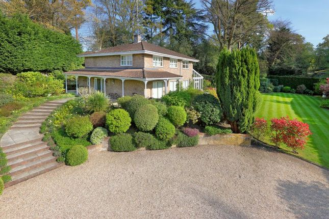 Thumbnail Detached house for sale in Richmondwood, Ascot