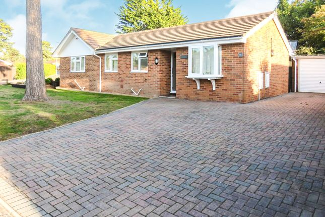 Thumbnail Detached bungalow for sale in Compton Beeches, St. Ives, Ringwood