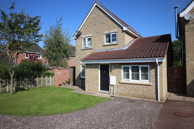 Thumbnail Detached house for sale in Brushmakers Way, Roydon, Diss