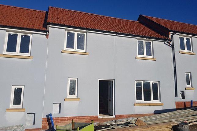 Thumbnail Terraced house for sale in Dukes Way, Axminster, Devon