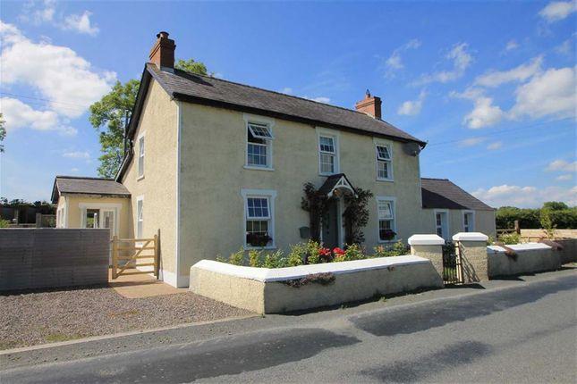 Thumbnail Detached house for sale in Derryboye Road, Crossgar, Down