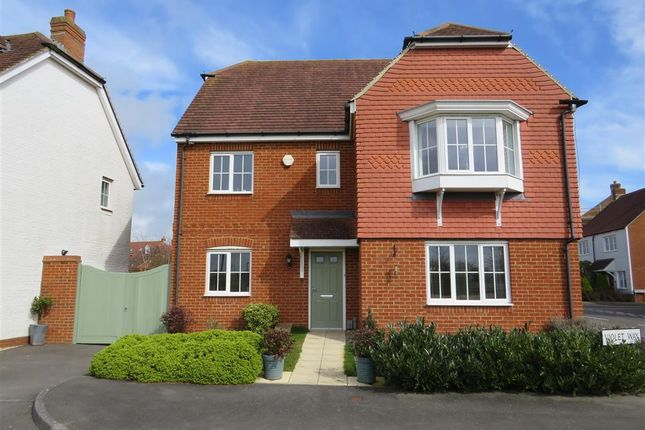 Thumbnail Detached house to rent in Violet Way, Kingsnorth, Ashford