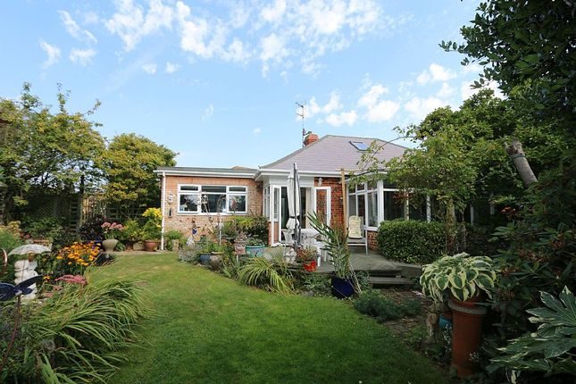 Thumbnail Bungalow for sale in Ferringham Lane, Ferring, Worthing, West Sussex