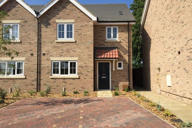 Thumbnail Semi-detached house for sale in Cricket Field Road, Mays Gardens, Newmarket
