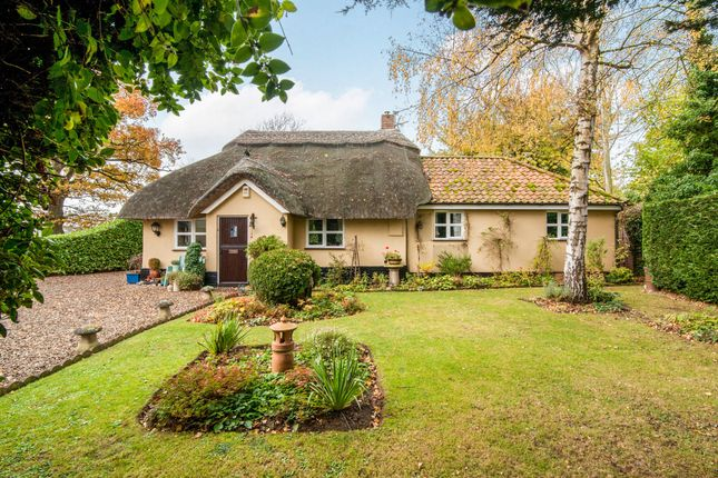 Thumbnail Cottage for sale in Harling Road, North Lopham, Diss