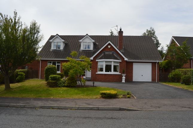 Thumbnail Detached house for sale in Dunbrae, Newry