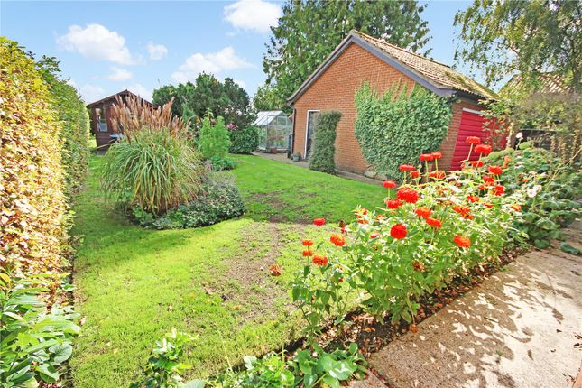 Thumbnail Detached bungalow for sale in Heywood Road, Diss