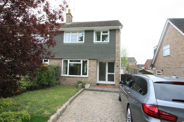 Thumbnail Semi-detached house to rent in Anson Close, Ringwood
