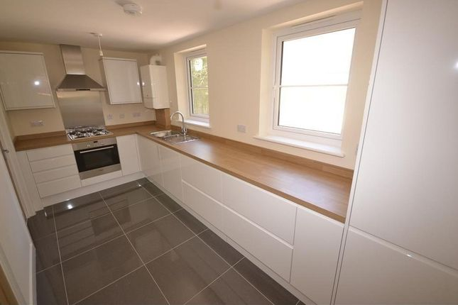 Thumbnail Town house to rent in Gillsmans Hill, St Leonards-On-Sea