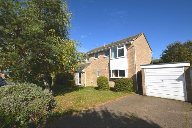Thumbnail Detached house to rent in Orson Leys, Hillside, Warwickshire