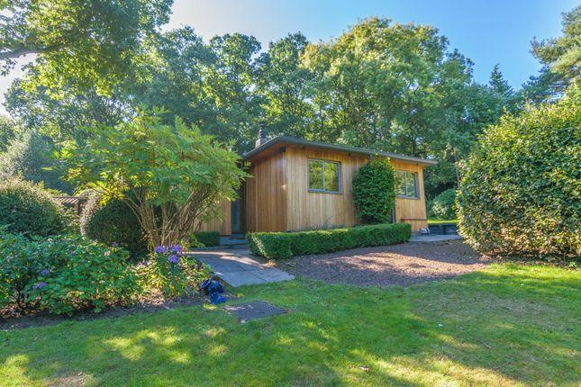 Thumbnail Detached bungalow to rent in Old Barn Lane, Churt, Farnham