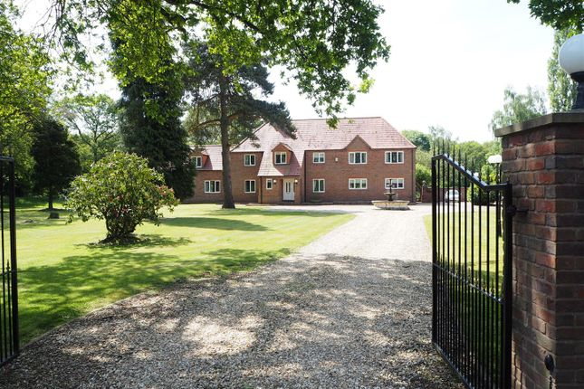 Thumbnail Detached house for sale in The Spinney, Beckingham Road, Coddington