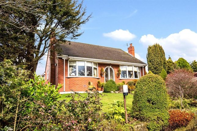 Thumbnail Detached house for sale in Sale Lane, Tyldesley, Manchester