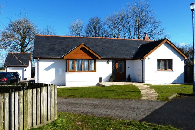 Thumbnail Detached bungalow for sale in Windsor Gardens, Cold Blow, Narberth