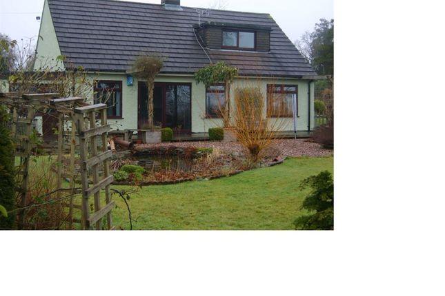 Thumbnail Bungalow to rent in Callington Road, Tavistock