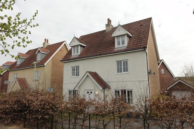 Thumbnail Detached house to rent in Kingfisher Road, Bury St. Edmunds