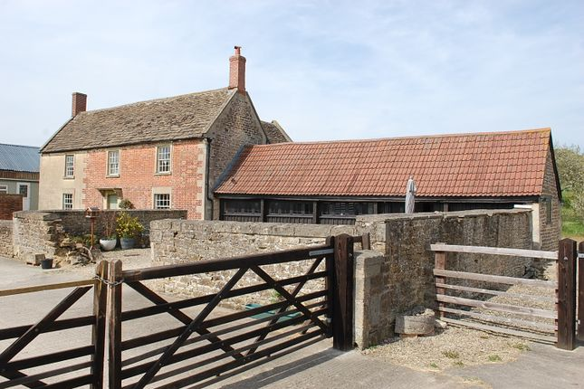 Thumbnail Detached house for sale in Foxham, Chippenham