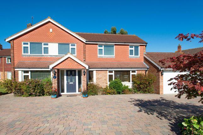 Thumbnail Detached house for sale in Drayton Avenue, Orpington
