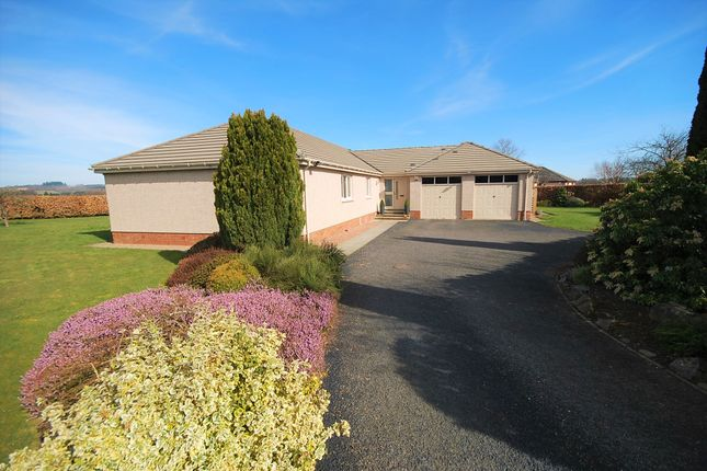 Thumbnail Bungalow for sale in Marlefield Grove, Perth