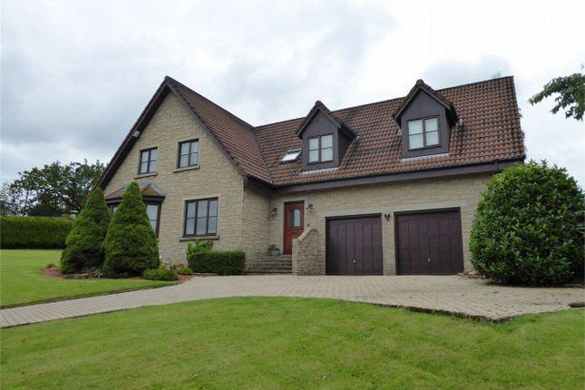 Thumbnail Detached house for sale in 14 Gartwhinzean Loan, Powmill, Kinross-Shire
