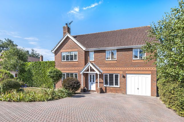 Thumbnail Detached house for sale in Danesfield, Ripley, Woking
