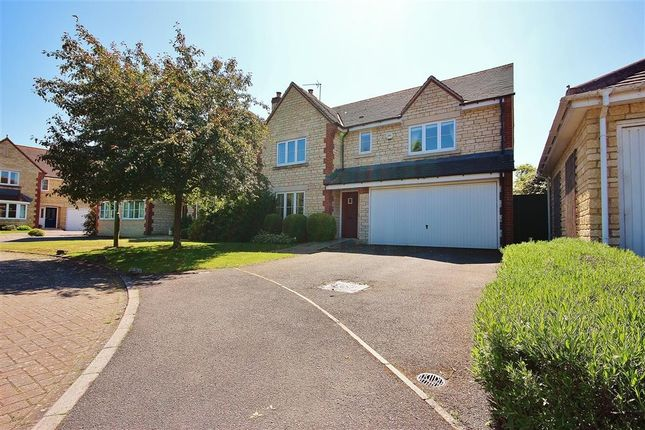 Thumbnail Detached house to rent in Mawkes Close, Stanford In The Vale, Faringdon