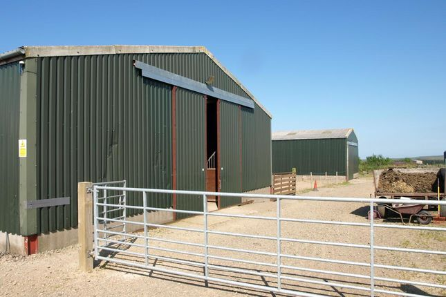 Thumbnail Farm for sale in Gamrie, Banff, Aberdeenshire