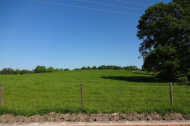 Views of Dinwoodie Lodge Park Johnstonebridge, Lockerbie, Dumfriesshire. DG11