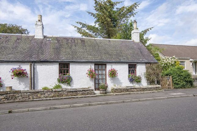 Thumbnail Bungalow for sale in Ancrum Cottage, Main Street, Muckhart