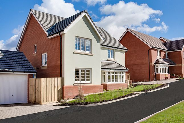 """Thumbnail Detached house for sale in """"The Chester"""" at Pixie Walk, Ottery St. Mary"""