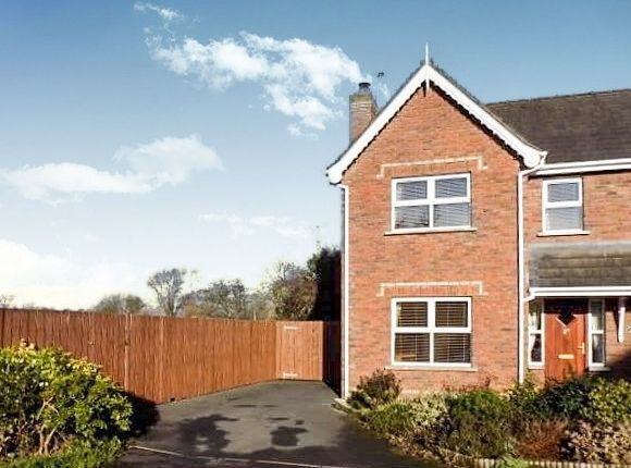 Thumbnail Semi-detached house to rent in 27 Brook Lodge, Balinderry Lower, Lisburn