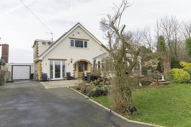 Thumbnail Detached bungalow for sale in Morton Road, Pilsley, Chesterfield