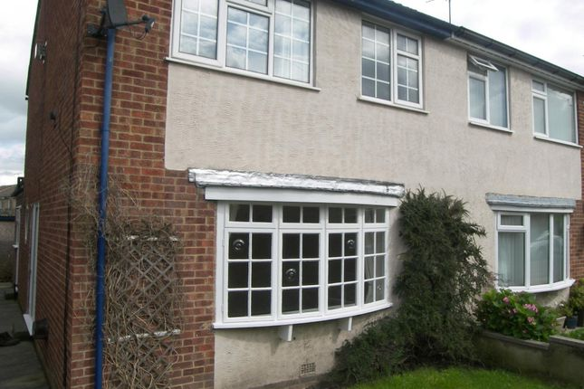 Thumbnail Semi-detached house to rent in Lime Street, Harrogate