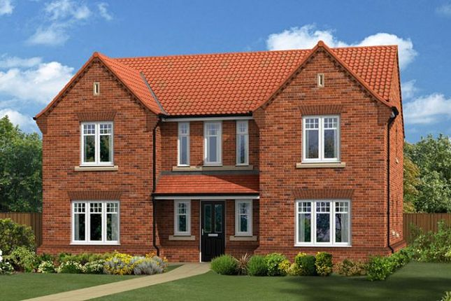 "Thumbnail Detached house for sale in ""The Edlingham"" at Lovesey Avenue, Hucknall, Nottingham"