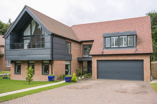 Thumbnail Detached house for sale in Woodland Gate Walk, Leybourne, West Malling