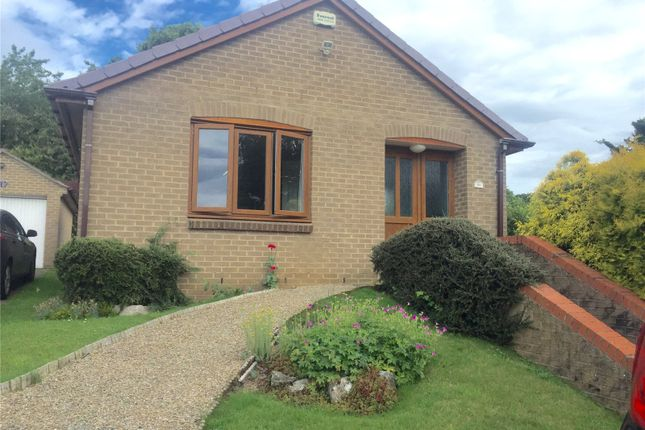 Thumbnail Bungalow for sale in North Meadow, Ovingham, Northumberland